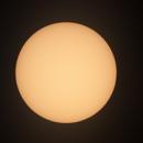 The Sun,                                Massimo Ermanni