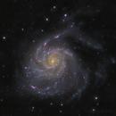M101, Pinwheel Galaxy,                                Bart Delsaert