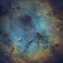 IC 1396 Elephant's Trunk Nebula  in SHO,                                Douglas J Struble