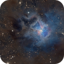 NGC 7023 - A focus on the Iris,                                Paddy Gilliland