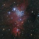 NGC 2264 Cone Nebula, Christmas Tree Cluster,                                Doug Summers