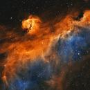 IC2177 - The Seagull Nebula,                                Jason Wiscovitch