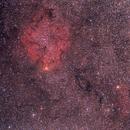 2010 IC1396 Aut-e2 Zenith Giove-11A 135mmf4 lens,                                Rocco Parisi