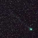 Comet Lovejoy (C/2014 Q2) 9/1/2015,                                Die Launische Diva