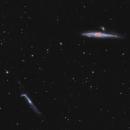 NGC 4631 & 4656,                                echosud