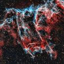 Bat Nebula - IC1340,                                Emanuele Bergamaschi