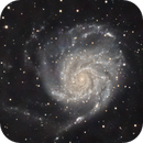 M101 L,                                Mitch