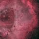 Rosette nebula,                                Palmito