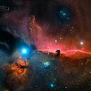 Barnard 33,                                TEAM_NEWASTRO