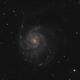 Pinwheel Galaxy,                                Ron Hunt