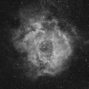 Rosette nebula in Ha,                                Lee B