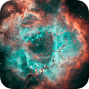 Three Views of Rosette Nebula,                                Lancelot365