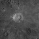 Copernicus und Reinhold,                                Spacecadet