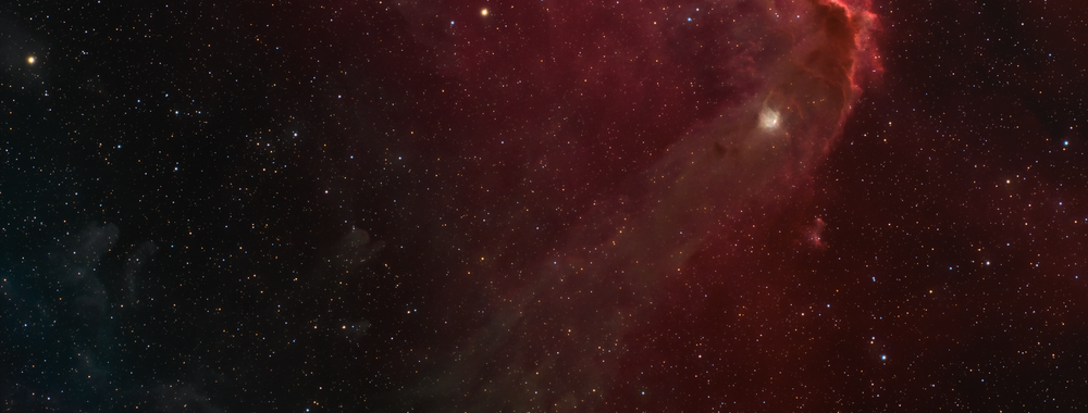 Barnard 35 & LBN 878 Complex,                                Min Xie