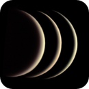 The three tine crescents of Venus (4,3 %, 5,8 %, 7,4 %),                                Henning Schmidt