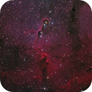 The Elephant's Trunk in IC1396,                                Francesco Meschia