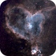 IC1805 Heart Nebula,                                Rich