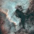 The Amelican aka a Gulf and a Pterodactyl,                                Przemysław Majewski & teleskopy.pl