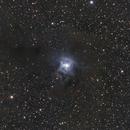 Iris Nebula,                                Matthias Steiner