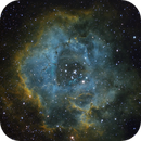 Rosette Nebula,                                Julian Alonso