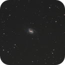NGC3359,                                Niamor