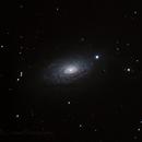 M63 the Sunflower Galaxy,                                Chris Levitan