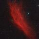 California Nebula,                                Scott Tucker