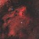IC 5070 The Pelican Nebula,                                Elmiko