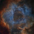 Caldwell 49 - The Rosette Nebula,                                Graham Conaty
