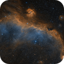 The Seagull Nebula in the Hubble Palette,                                Alex Roberts