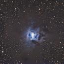 NGC7023 Iris Nebula,                                Michael Broyles
