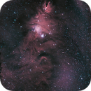 Christmas Tree Cluster and Cone Nebula,                                AstrophotographywithDan