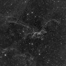 Flying dragon nebula : SH2-113, SH2-114,                                Antonio F. Sánchez
