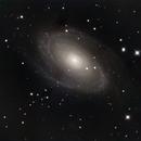 M81,                                Dominic J. Angelini