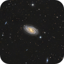M109. Spectacular SBbc-type galaxy in Ursa Major.,                                Nikita Shamorgin