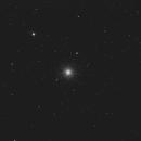 M 3,                                Pantoffeltier