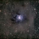 NGC 7023 - The Iris Nebula,                                jgibsonemu