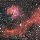 IC 2177 - Möwennebel,                                Alexander Grasel