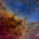 The Dragon Nebula, Hubble Palette,                                Eric Coles (coles44)