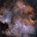 Norht American Nebula - NGC7000,                                William Gillam