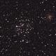 M35, ammasso aperto nei Gemelli,                                Giuseppe Nicosia