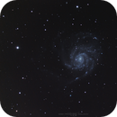 M101, The Pinwheel Galaxy, 04-03-2019,                                Martin (Marty) Wise