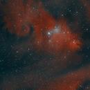 Christmas tree cluster and Cone nebula,                                Cristian Cestaro