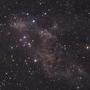 LBN_413 & PGC 58928,                                Piero Venturi