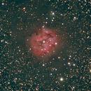 IC 5146: The Cocoon Nebula (2012),                                Kurt Johnston