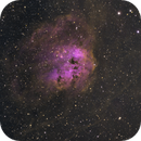 IC 410, The Tadpoles in H(HSO),                                Madratter