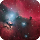 Horsehead and Flame Nebula,                                Dean Salman