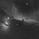 Horsehead and Flame nebula HA,                                Scott Richards