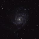 M101 LRGB from the Dallas suburbs,                                John Willis