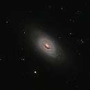 M64, The Black Eye Galaxy,                                Randy Flynn